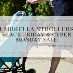 Umbrella Strollers bfb