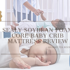 Sealy Crib Mattress